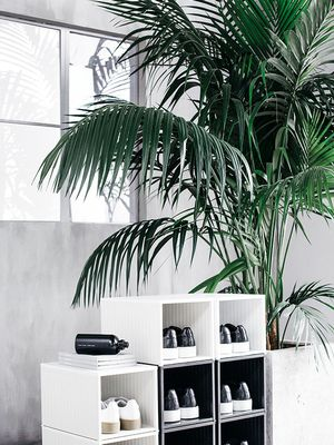 Putting Your Stuff on Display Is the Hip Design Trend IKEA Is Backing