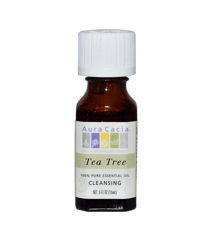 Essential Oil in Cleansing Tea Tree by Aura Cacia
