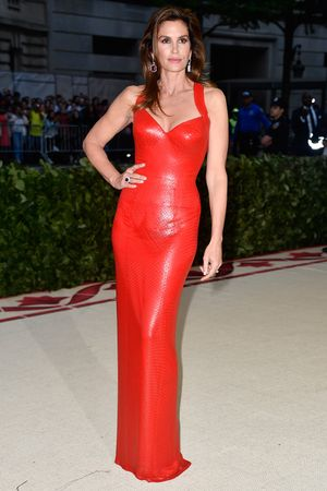 The Celebs Who Broke Anna Wintour's Met Gala Dress Code