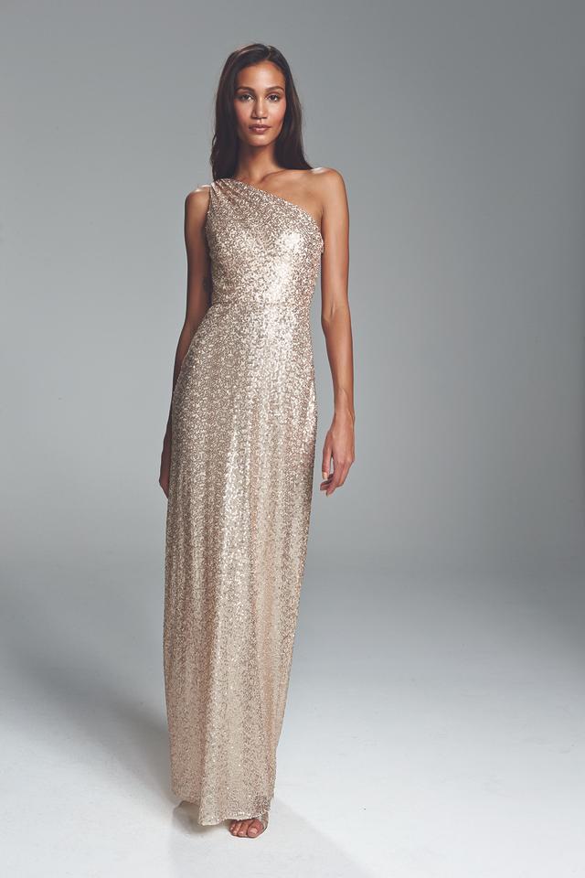 Am Leona Sequin Dress