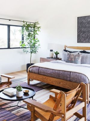 Sweet Dreams: The Best Plants for Bedrooms Will Help You Sleep Better