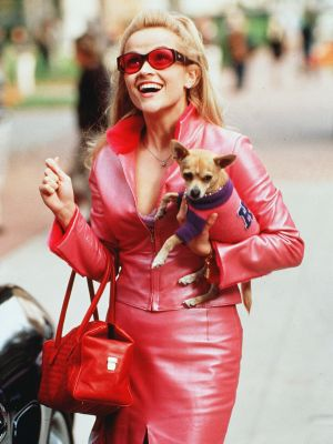 It's Happening: Legally Blonde 3 Is Officially in the Works
