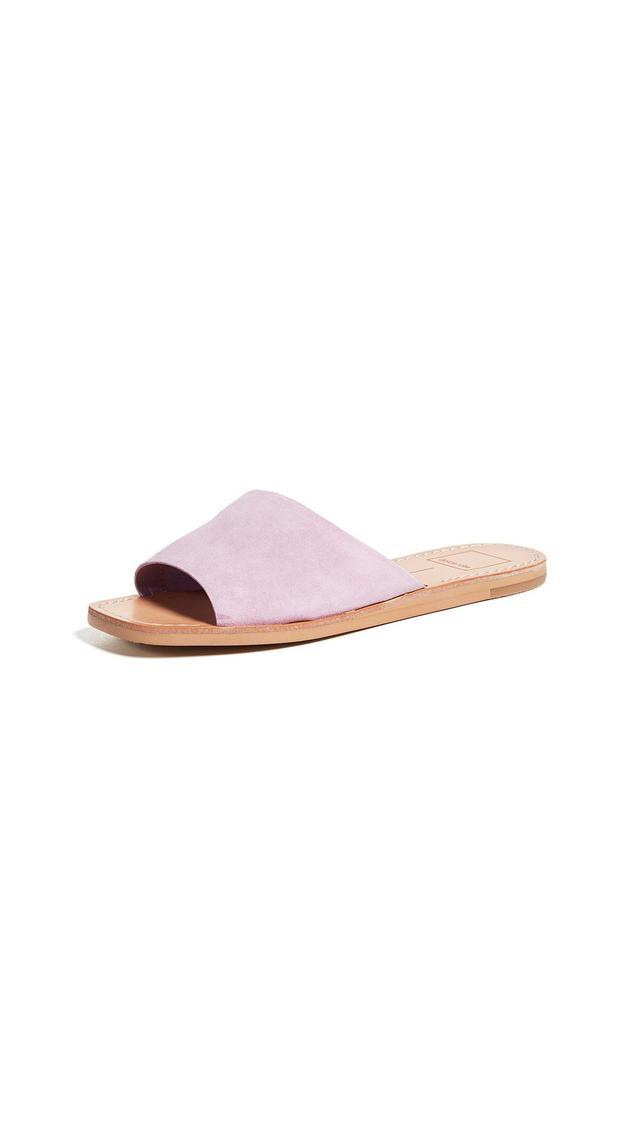 Cato Slides