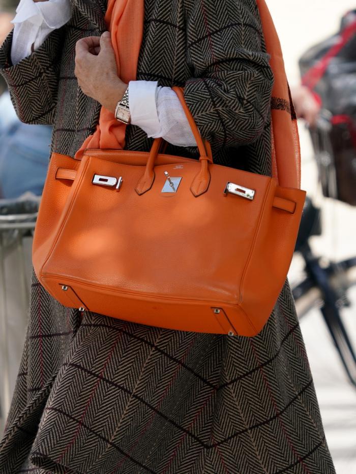 Birkin Bag Prices: Tamara Kalinic carries a massive Hermès shopping bag
