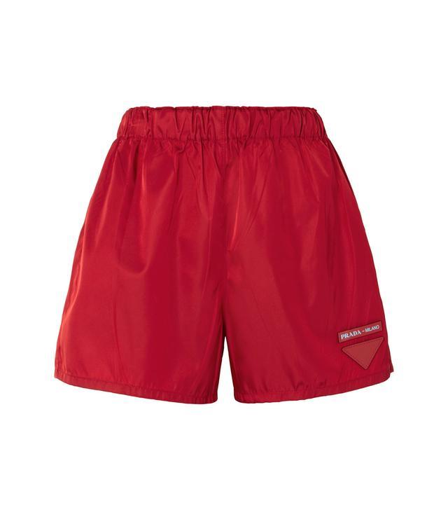 Appliquéd Shell Shorts