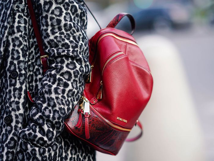 The 25 Best Backpacks for Work and Travel