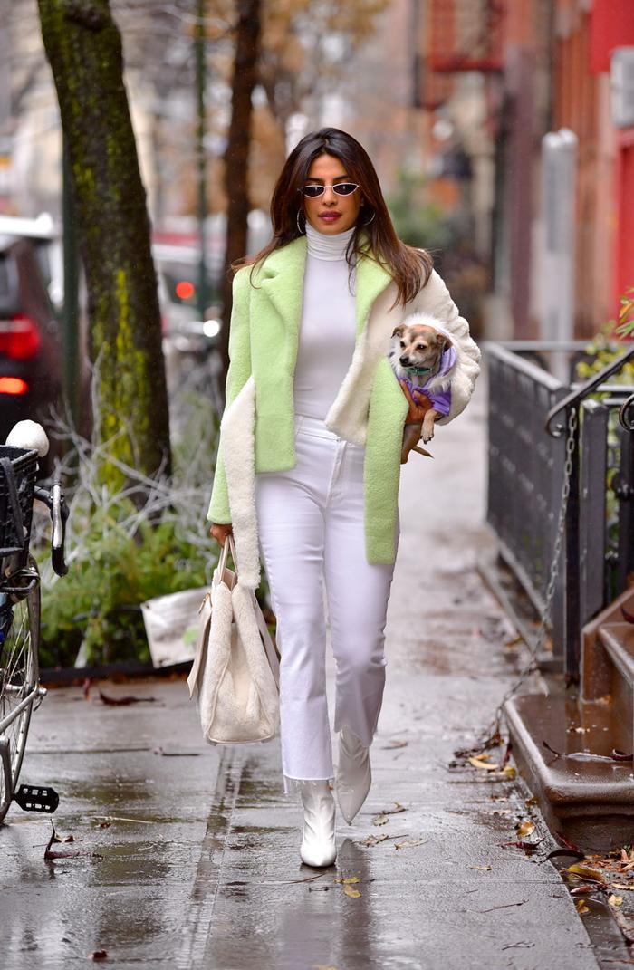 Celebrity Winter Outfit Ideas: Priyanka Jonas