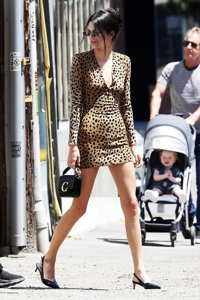 Kendall Jenner leopard print dress