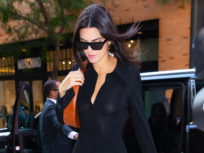 Kendall Jenner Wore Fall's Most Reasonably Priced It Bag