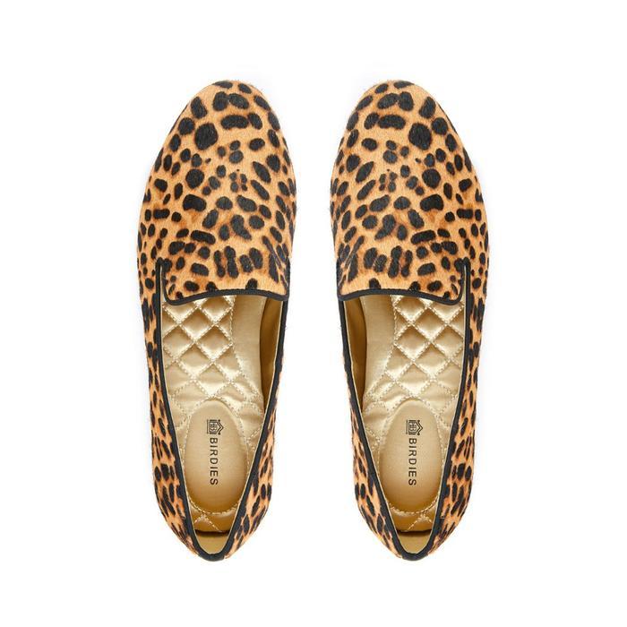 Birdies The Starling in Cheetah