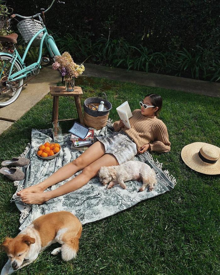 Fake Picnic Instagram Trend Summer 2020