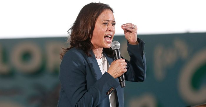 Kamala Harris's Rainy-Day Converse-and-Jeans Outfit Just Went Viral