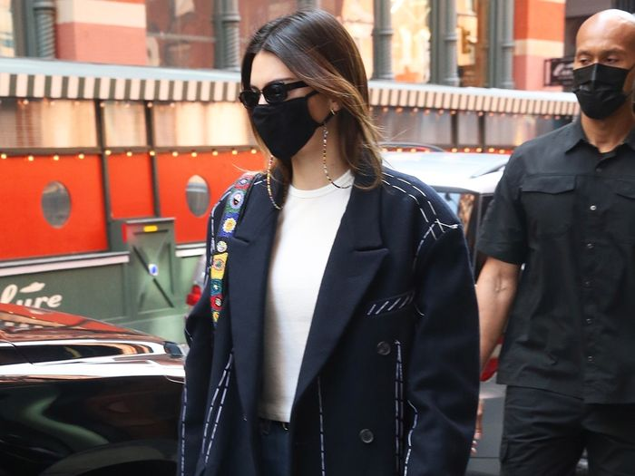 Kendall Jenner Wore Spring's Prettiest It Bag