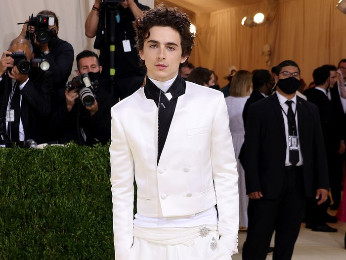 Timothée Chalamet Wore Sweats With Converse to the Met Gala, and I'm Screaming