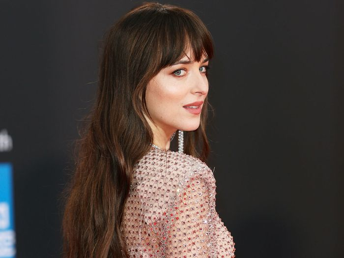 Dakota Johnson wore a sheer dress with feathers on the red carpet