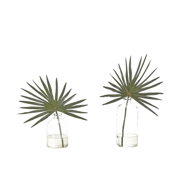 NDI Set of 2 Palms