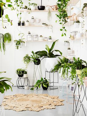 Found: The Coolest DIY Planter Ideas on Pinterest