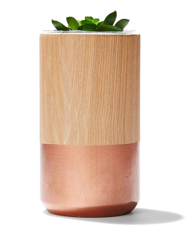 Kmart Two-Tone Vase