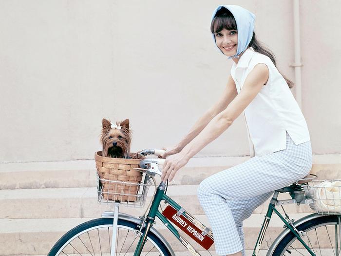 Audrey Hepburn wardrobe
