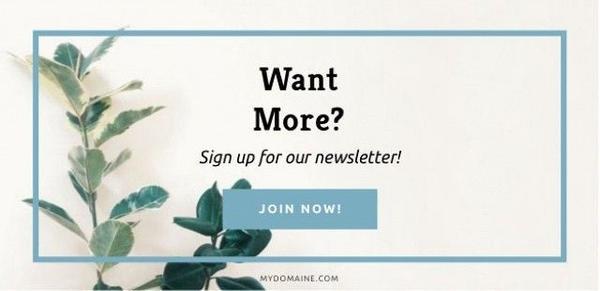 MyDomaine newsletter