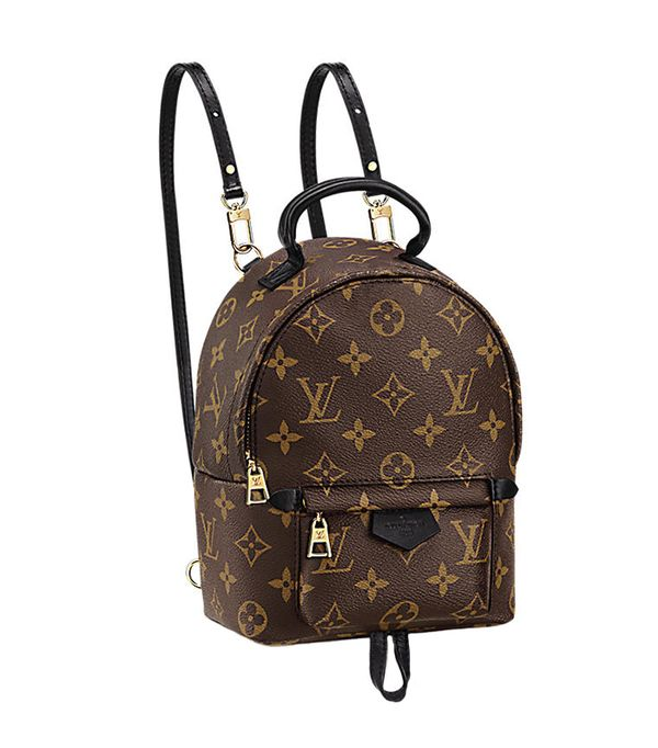 stylish backpacks - Louis Vuitton Palm Springs Backpack Mini