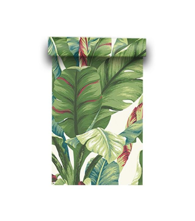 Steve's Blinds & Wallpaper Tropical Print
