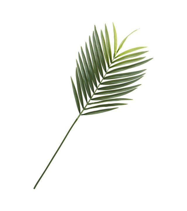 phoenix faux palm leaf