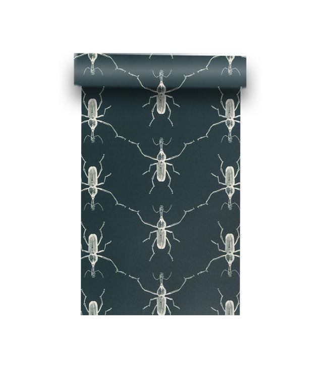 Walnut Wallpaper Buggie Wallpaper
