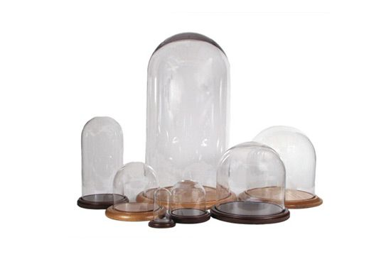 Evolution Glass Domes