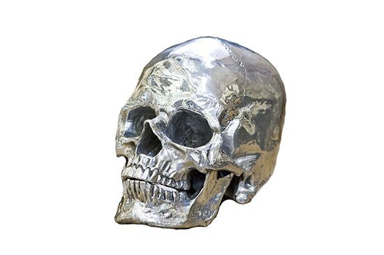 Tonic Home Metal Skull