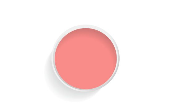 Benjamin Moore Pink Peach (#2009-40) Paint, From $37 per gallon