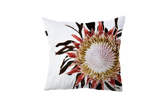 Clinton Friedman Collections Scatter Cushion, From $85