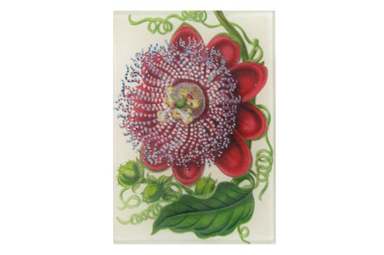John Derian Passiflora Mini-Tray