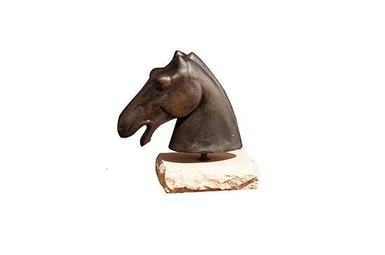 Arcadian Home  Horse Head