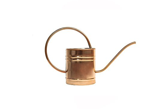 Amazon Master Craft Watering Can