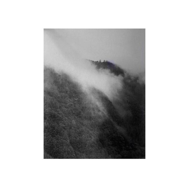 Debbie Carlos Mountain Fog Poster