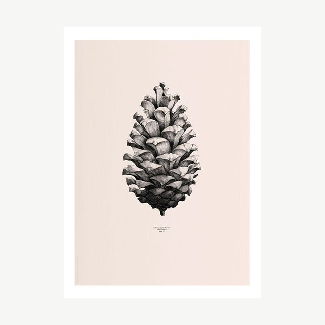 Form Us With Love Nature 1:1 Pine Cone