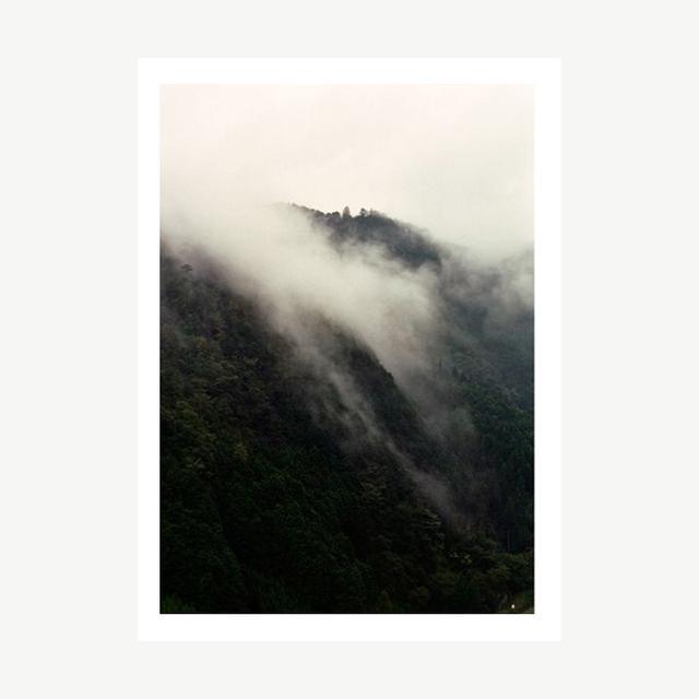 Debbie Carlos Fog Print