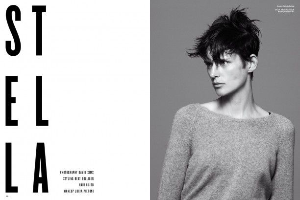 Inspiration Board: Stella Tennant in V Magazine