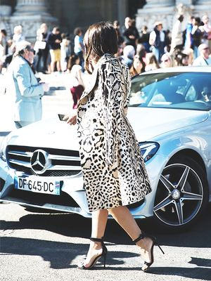Animal Kingdom: How to Wear Fall's Fiercest Prints