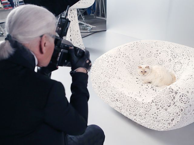 Choupette's Makeup Line Hits Shelves! Plus, More Beauty News