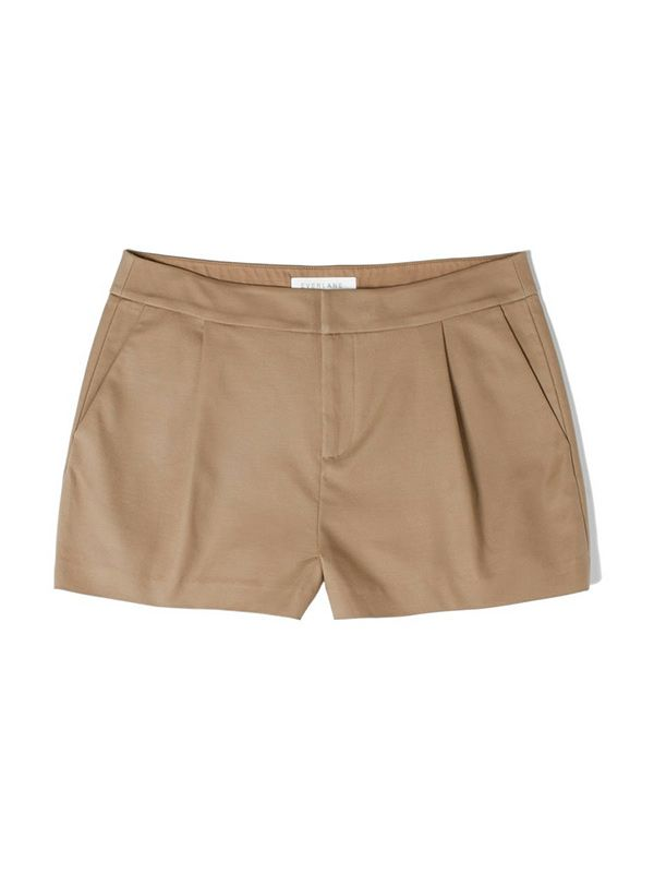 Everlane Pleated Shorts
