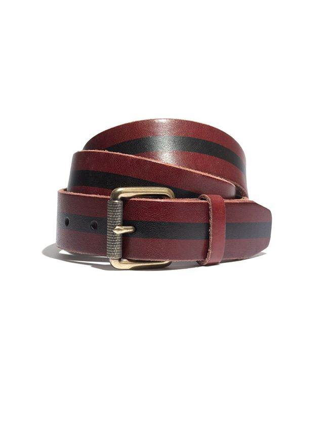 Madewell Paintsripe Belt