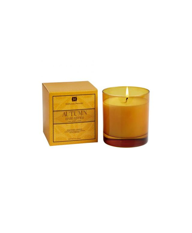 Hillhouse Naturals Autumn Harvested Scent Soy Blend Candle