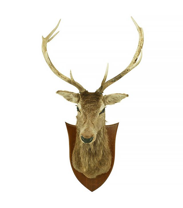 1stdibs Stags Head
