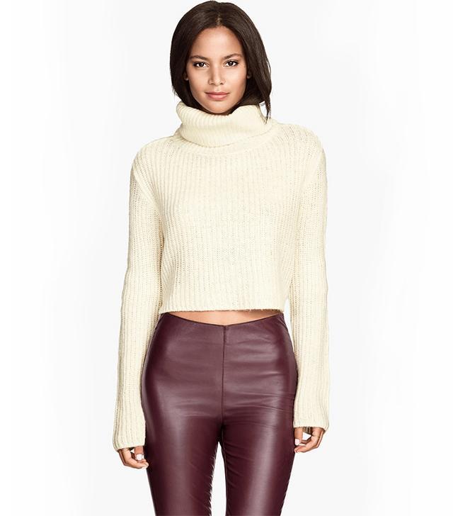 H&M Short Turtleneck Sweater