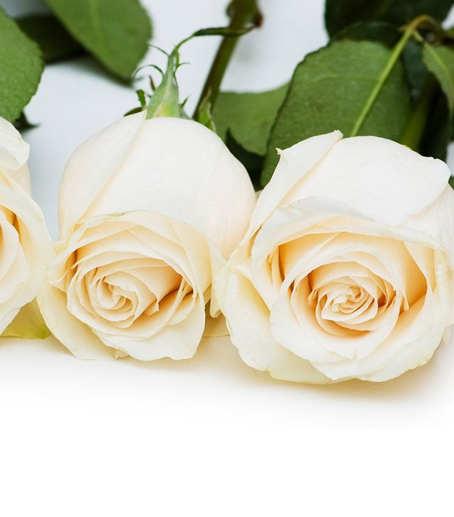 The Bouqs Hollywoodland White Roses