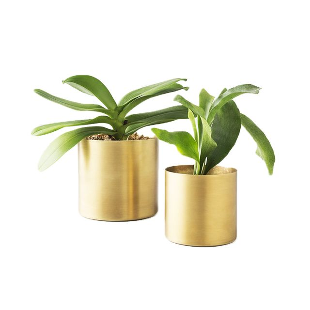 Schoolhouse Electric Brass Planter