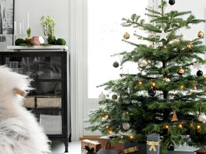 The 10 Stages of Saying Goodbye to Your Christmas Tree
