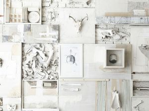 Is Decorating With Bones the Next Big Trend?